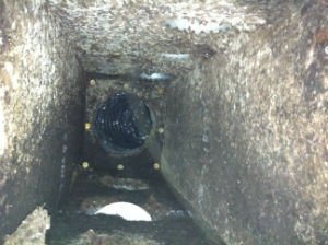 mold in vent duct in a Raleigh Home